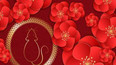 Photo of Zodiac chinezesc până 5 ianuarie 2020. Șobolanii și Mistreții întră într-o eră a succesului, inclusiv în dragoste