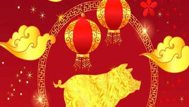 Photo of Zodiac Chinezesc pentru săptămâna 6-12 ianuarie 2020. Perioadă benefică din punct de vedere amoros pentru Câini și Dragoni