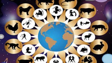 Photo of Zodiac chinezesc pentru sâmbătă, 11 ianuarie 2020. Șobolanii și Oile dau de necaz