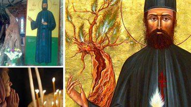 Photo of Citește azi, 17 decembrie, Rugăciunea scurtă a Sfântului Daniel pentru izbăvirea de boală și iertarea de păcate