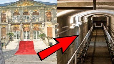 Photo of Tunelul secret de sub palatul lui Gigi Becali. Ce conducator al Romaniei mergea la prostituate prin el